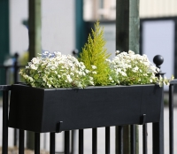 Urban Primo Window Box