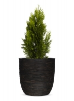Ribbed Egg Shaped Planter