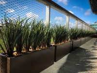 Elemental Premium Rectangular Trough Planters with Palms